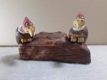 A couple buzzards waiting around